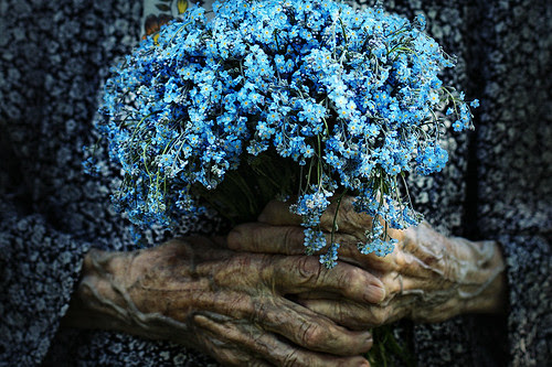 LE LOVE BLOG LOVE STORIES GRANDPARENTS LOVE PHOTOS Alzheimers nezabudki by Ludmila Yilmaz, on Flickr