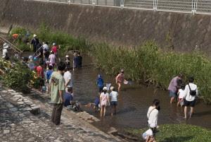 今年は何をみることができるか、全員で川の中に