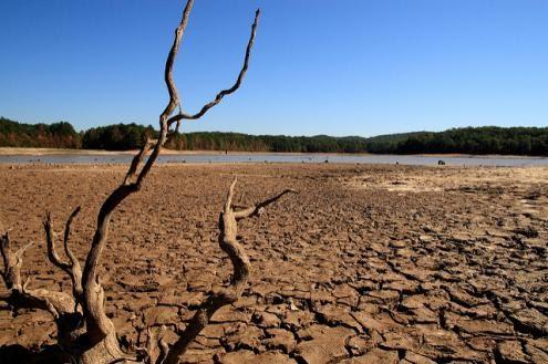 4 bilhões de pessoas sofrem severa escassez de água