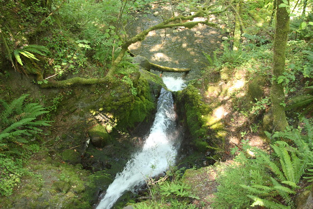 Ruckel Creek Falls