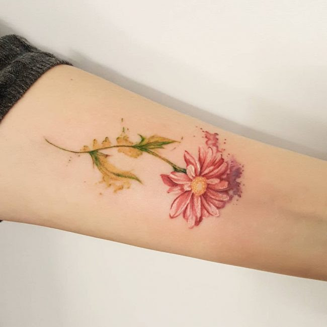 Daisy Flower Meaning Tattoo Flowers Healthy
