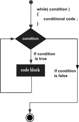 while loop in C#