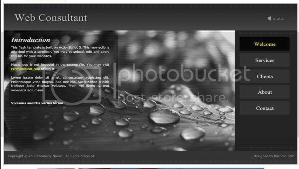 Flash Black Web Consultant Web2.0 Template