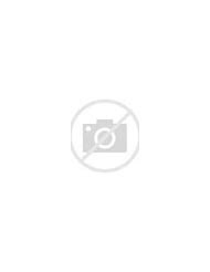 Summer Camp Themes Find Your World