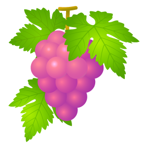 ブドウの無料イラスト3 花植物イラスト Flode Illustration フロデ