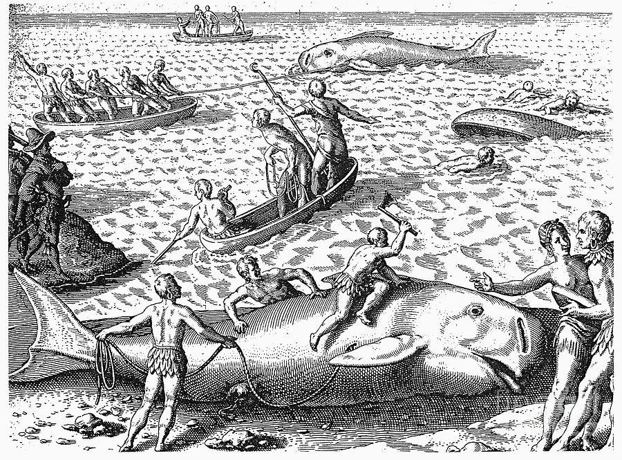 http://images.fineartamerica.com/images-medium-large/1-harpooning-whales-c1590-granger.jpg