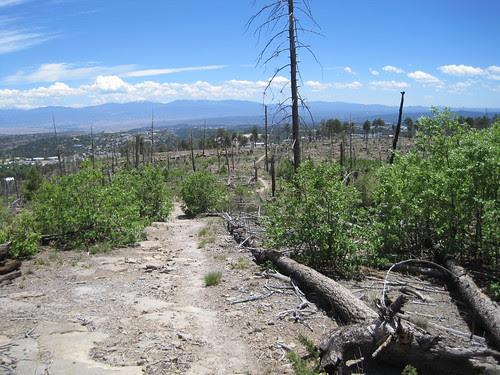 Quemazon trail.