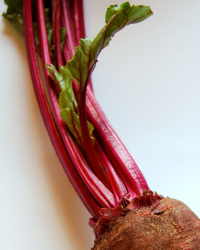 beetroot stems ©