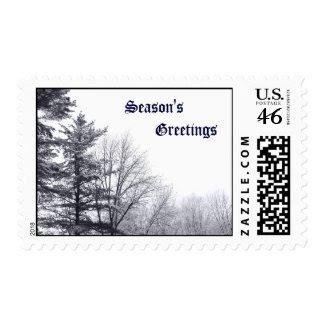 Snow-covered Trees: Horizontal – Medium stamp