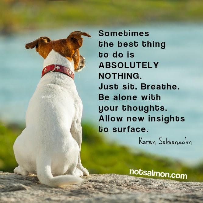 salmansohn alone thoughts dog