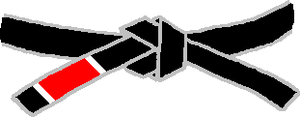 A Brazilian Jiu-Jitsu black belt.