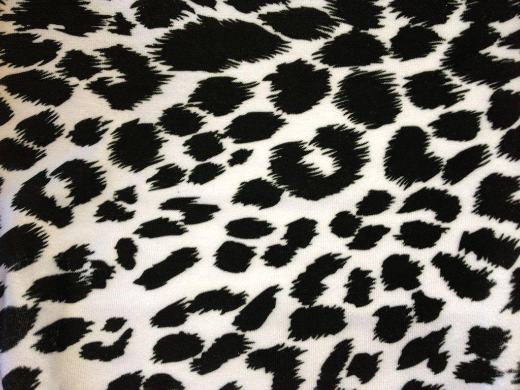 Black Cheetah Wallpapers  Wallpaper Cave