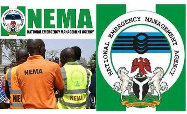 NEMA Northeast Boss Slumps, Dies in Maiduguri's Hotel