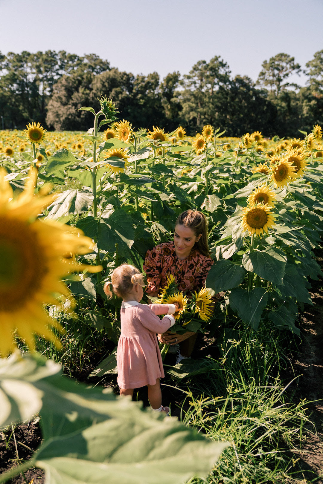 pink floral top brown pants sunflowers