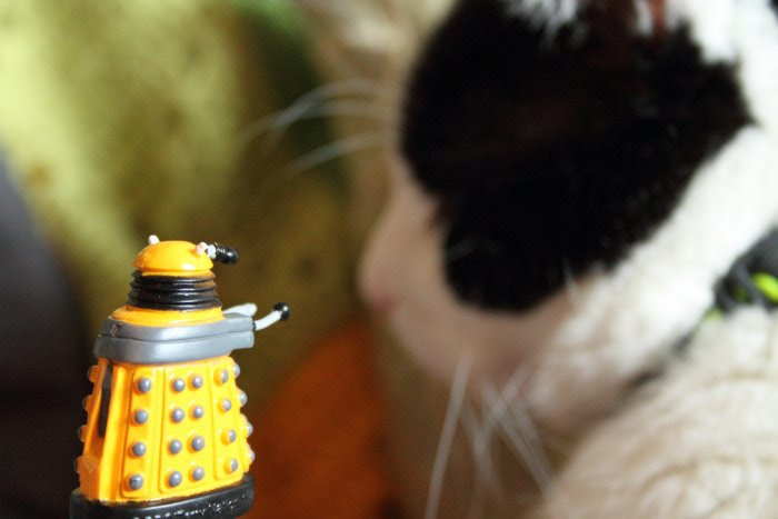 Darlek goes for Charlie