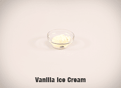 5732-Vanilla-Ice-Cream-cropped-full-res copy