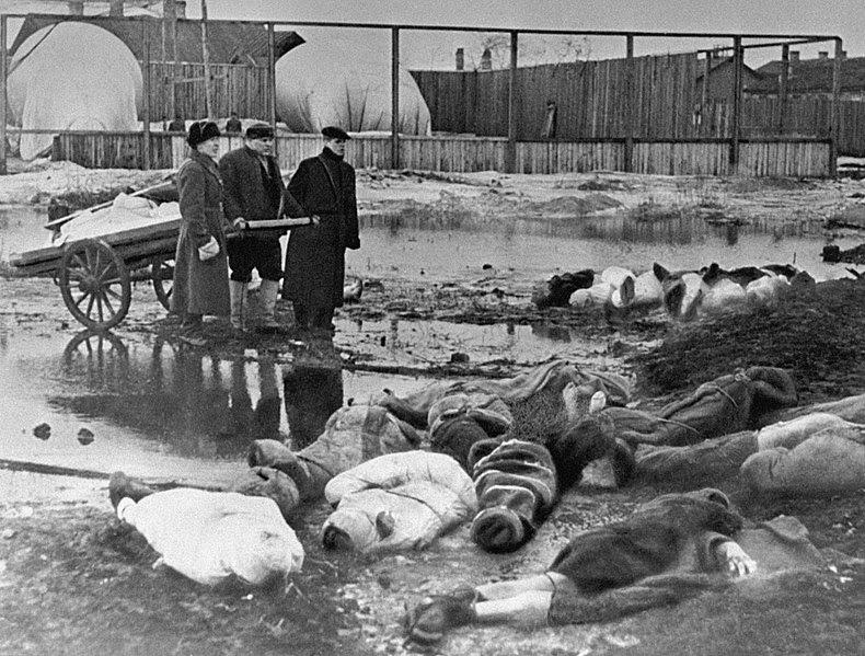 File:RIAN archive 216 The Volkovo cemetery.jpg