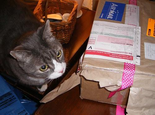 LB Never Met  a Box He Didn't Love