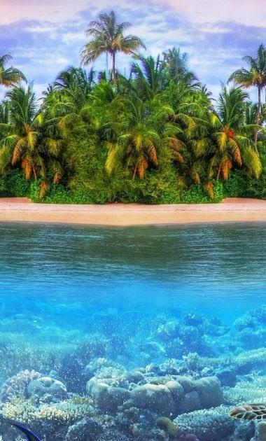 Noministnow: Iphone 11 Pro Max Wallpaper 4k Beach