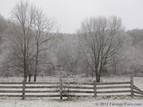 Snowy farm morning 3 - FarmgirlFare.com