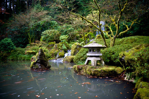 Japanese Gardens by Cameron Booth