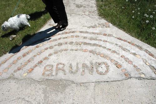 bruno 014b