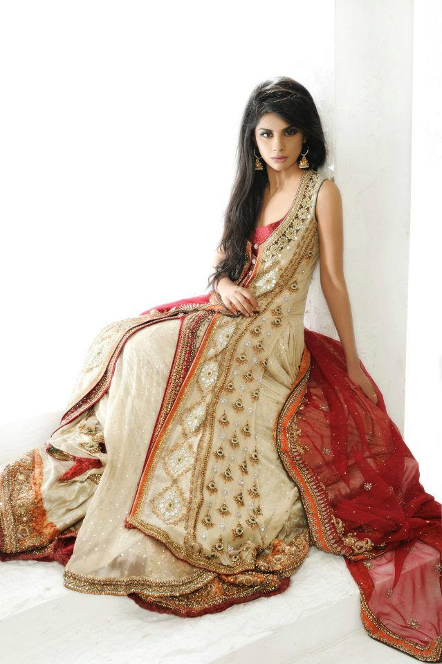latest pakistani  indian wedding dresses 201617 collection