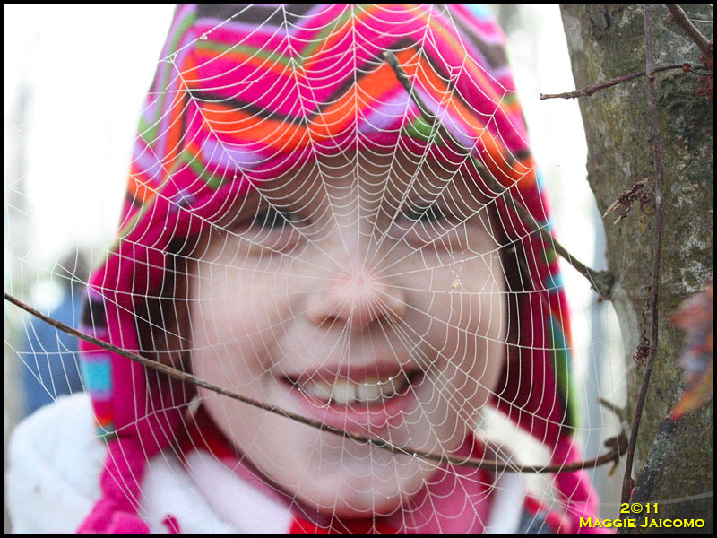 Grace framed in a Spider's web