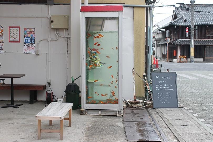 sleepyberry:  telephone booth aquarium in Nara