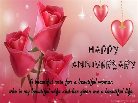 Happy Anniversary ? A Beautiful Rose   DesiComments.com