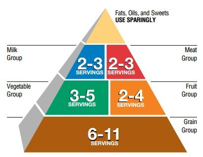 Pyramid Power. Guide to the application. - Body Building ...
