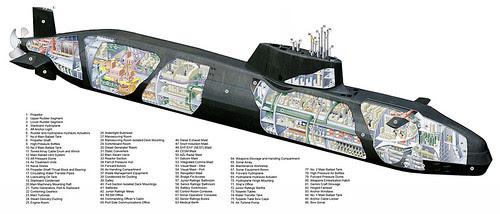 astute cutaway