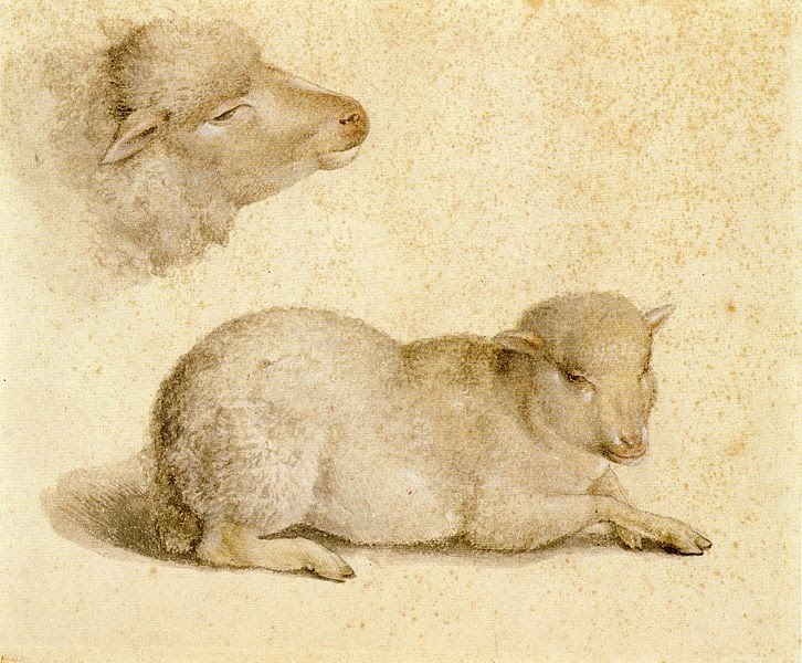 lamb william blake essays English essays: the lamb search browse essays a child, asks the lamb about its origins: jesus is william blake's the lamb.