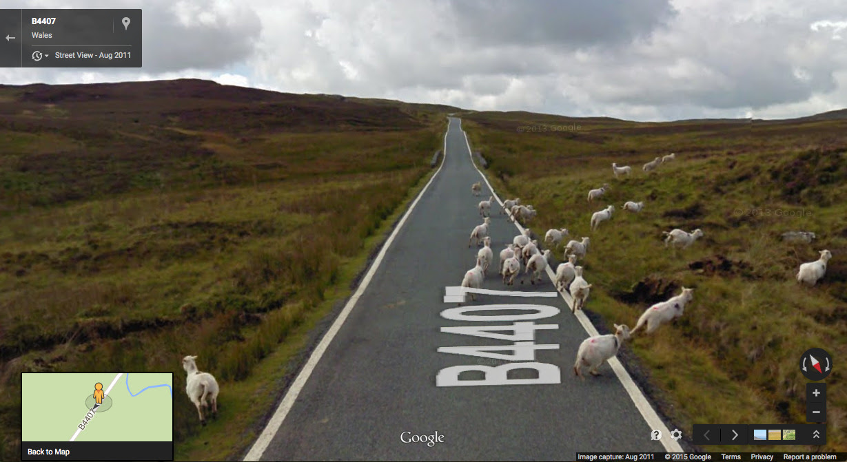 Getting out of the way, in Snowdonia National Park, Wales