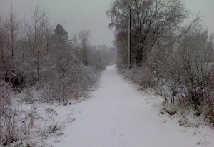 Söderåsen i vinterskrud