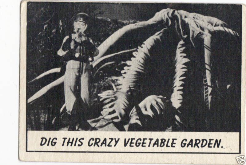 laffs unk dig this crazy vegetable garden