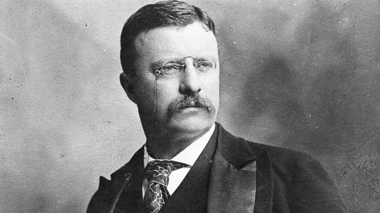Theodore Roosevelt's quotes