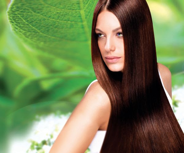 10 Best organic hair color - Green Diary - Green ...