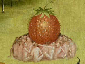 bosch strawberry