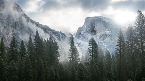Wallpaper Yosemite, 5k, 4k wallpaper, 8k, forest, OSX