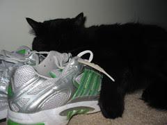 Shoe pillow