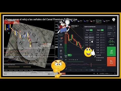 Como poner el  reloj a las señales del Canal Premium Trading Live