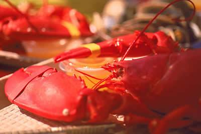 cooked-lobster.jpg