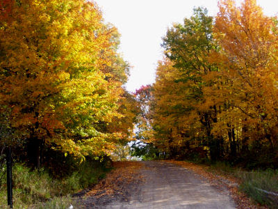 Darr Road with fall colors
