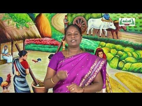 Class 12 Tamil தமிழர் குடும்ப முறை இயல் 3 Kalvi TV