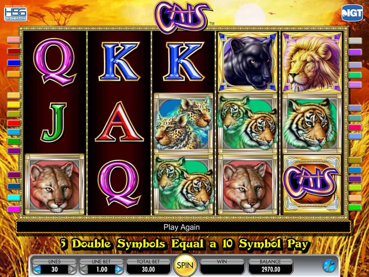 Slot madness casino bonus