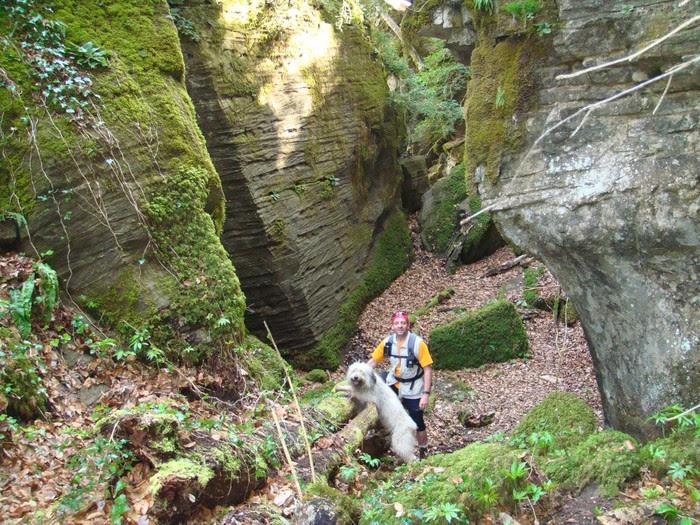 Foto de Sant Privat d'en Bas-Gorges del Torrent de Gorners-Escletxes de la Freixeneda-Salt de Sallent-Sant Privat