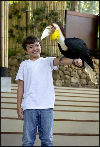 Holding a huge bird at the Phuket Birdpark