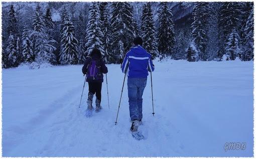 Con le ciaspe in Val Saisera (clicca per ingrandire)
