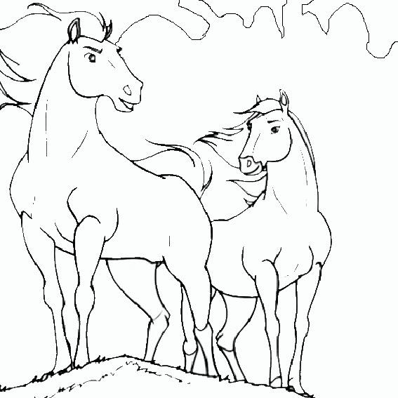 Malvorlagen Pferde 7 Malvorlagen Kostenlos